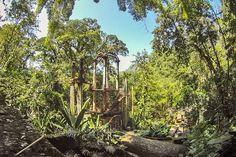 Top 10 unusual gardens around the world