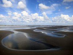 Ook in Nederland is het WNF actief. Veel vrijwilligers zetten zich in om de Nederlandse natuur onder de aandacht te krijgen. Meer weten? Klik op de pin!