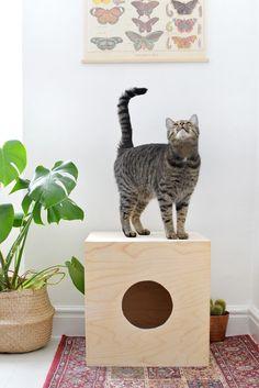 DIY   cat house @burkatron