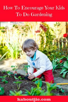 Gardening is so good for children, it comes naturally to them and being outdoors in nature is so beneficial. Here are some ways to encourage your child to garden and will teach children gardening. Parenting Humor, Parenting Advice, Great Hobbies, Gardening For Beginners, Raising Kids, Child Development, Life Skills, Early Childhood, Teaching Kids
