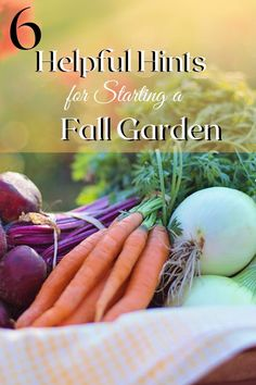 Fall gardening has its own set of rules! Enjoy your time outside in the Fall weather with these helpful garden tips! Fall Weather, Autumn Garden, Gardening Tips, Helpful Hints, The Outsiders, Useful Tips, Helpful Tips