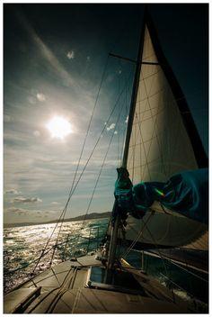 sailing in sunrise