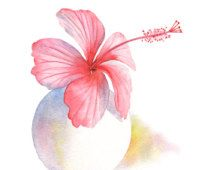 Pink Hibiscus print HV1416, pink hibiscus watercolor painting, pink hibiscus painting, botanical art, pink living room wall art. 5 by 7 size