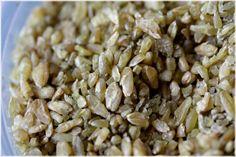 תבשיל פריקי בשקדים/ סלט עם עשבים וקצח