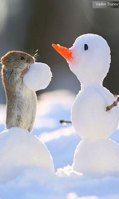 🎶Would you like to build a snowman...🎶 I make a snowman MOUSE #by vadim trunov on 500px.com