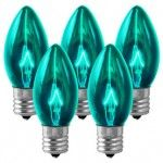 Teal incandescent Christmas lights in Albany, NY, Clifton Park, NY and the Capital Region, NY from the Christmas Guys. Incandescent Christmas Lights, C9 Christmas Lights, Winter Christmas, Vintage Christmas, Christmas Decorations, Clifton Park, Christmas Photography, Water Bottle, Teal