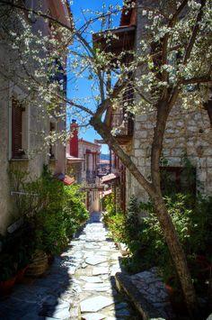 Alley in Arahova , Greece