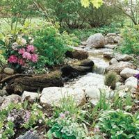 Garden Stream gardening-ideas
