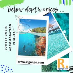 Home - Cheap Hotel, Flights and Holiday Accomodations Flight And Car, Flight And Hotel, Cheap Flights And Hotels, Cheap Hotels, Tours, Car Rental, Under The Sea, Adventure, Holiday