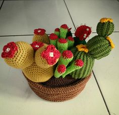 Cactus Everywhere  This is my first cactus that i made without any pattern from internet or book. Since I couldn't find any free pattern of this kind of cactus  I made some mistakes then I did some corrections to the pattern that I've made. I knew this was unperfect yet.  Keep crocheting Wulan!  #crochet #amigurumi #crochetaddict #cactus #garden #yarns #gift #rajut #Ilovecrochet #likeforlike #greenyarns #natural #crocheting by shob48