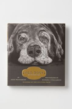 old dogs are the best dogs / anthropologie  Elvis so deserves to be on the cover of this book.  best dog EVER.
