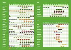 mit saisonalen/regionalen Obst und Gemüse kochen für ein besseres Klima