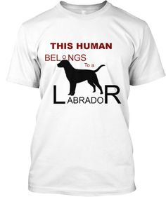 'This Human Belongs to a Labrador'...sale ends Sunday! Get This T-Shirt www.teespring.com/labshirt