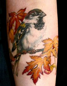 50 Sparrow Tattoo Designs and Meaning // April, 2020 Pretty Tattoos, Love Tattoos, Beautiful Tattoos, New Tattoos, Tatoos, Feminine Tattoos, Fall Leaves Tattoo, Autumn Tattoo, Forearm Tattoos