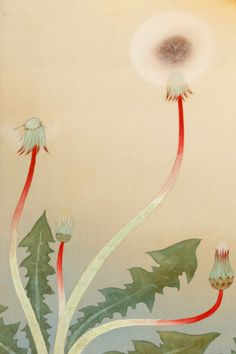 Bokuyo Katayama (Japanese, Japanese artists had a way of making even weeds look elegant Fox Painting, Painting & Drawing, Art And Illustration, Design Oriental, Art Asiatique, Art Japonais, Japanese Painting, Chinese Painting, Art Graphique