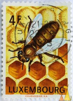 Luxembourg Honey Bee Postage Stamp