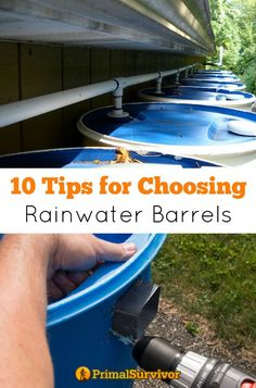 10 Tips for Choosing Rainwater Barrels. I've seen lots of rainwater harvesting systems which use anything from modified trash cans to expensive designer wooden rain barrels. Regardless of what approach you are going with, here are some tips for choosing rainwater barrels to make sure you get ones right for your goals.