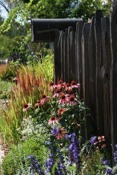 Carmel-Style Cottage - traditional - landscape - san francisco - Mozaic Landscapes