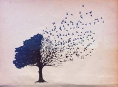 Quotes and inspiration QUOTATION - Image : As the quote says - Description illustration arbre et oiseaux Sharing is love, sharing is everything Boys With Tattoos, Bird Tree, Butterfly Tree, Maybe One Day, Favim, Illustrations, Bird Illustration, Hipsters, Diy Wall Art