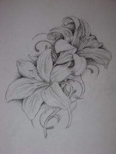 i have seen a lot of messed up lily tattoos so im - lily tattoo Tiger Lilly Tattoo, Lilly Flower Tattoo, Lilly Tattoo Design, Lillies Tattoo, Flower Tattoo Designs, Flower Tattoos, Lilly Flower Drawing, Ribbon Tattoos, Flower Drawings