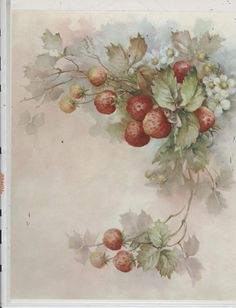 Strawberries 31 by Sonie Ames China Painting Study 1969 | eBay
