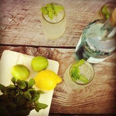 RICCIARDELLA'S / Phoenicia Best Martini in town, hand's down.  NEIGHBORS — The Graham & Co.
