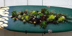 Succulent Surfboard Planter