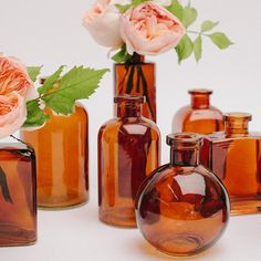 Our lovely amber apothecary bottle collection includes 9 bottles ranging from about to in height. We have selected our favorite shapes and created this a Brown Glass Bottles, Amber Glass Bottles, Summer Centerpieces, Bottle Centerpieces, Wedding Bottles, Wedding Vases, Wedding Shower Decorations, Colored Vases, Apothecary Bottles