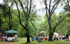 Hennop's Pride is 'n netjiese kampplek langs die Hennopsrivier.  Die kampplek is slegs 24km vanaf Pretora en 22km vanaf Hartbeespoortdam.  Daar is baie vir oud en jonk om te doen of om sommer net 'n bietjie te rus in die natuur.  Die kampplekke het grasbedekking en genoeg skaduwee. Picnic Spot, Outdoor Cooking, Dolores Park, Pride, To Go, Swimming, Putt Putt, Camping, Caravan