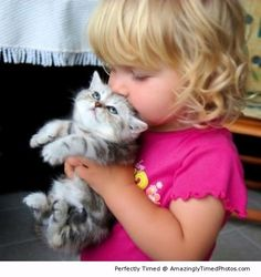 Mmmmm –  The adorable kitten has found a new friend to play with.