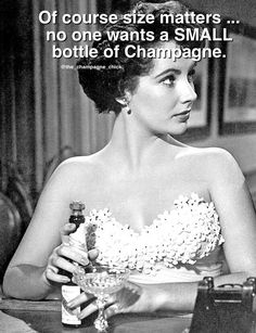 Drinking Toasts, Champagne Quotes, Drinking Quotes, Wine Quotes, Champagne Bottles, In Vino Veritas, Vintage Humor, Wine And Spirits, Laugh Out Loud
