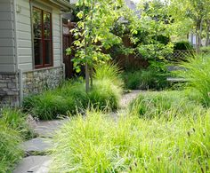 love this meadowy garden  www.rockandrose.com