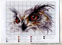 75005122_large_0_2a1a8_a0b01f22_1L.jpg 500×363 pixels