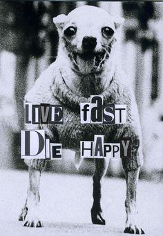 LIVE FAST, DIE HAPPY