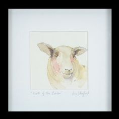 North of the border – Lou Stafford. Watercolour. Sheep. Isle of Bute. Scotland. Animal. Painting.