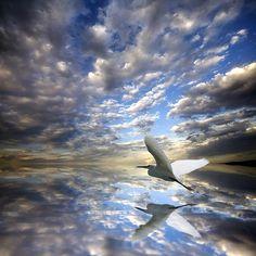 Cloud reflection, Guanajuato, Mexico...... #perfectpicture
