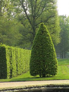 Cool HANNOVER K nigliche G rten in Hannover Herrenhausen Hanover Royal gardens germany Foto von jens