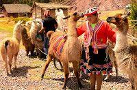 Peru: Cuzco - Diário de Viagem ~ Blog Viagens Cinematográficas