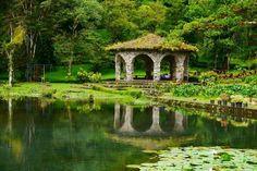 Selva Negra - Nicaragua