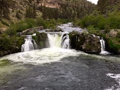 Looking for a fun hike close to Bend to soak up this gorgeous weather and explore a local waterfall?  Steelhead Falls does not disappoint! Check out the full scoop below...