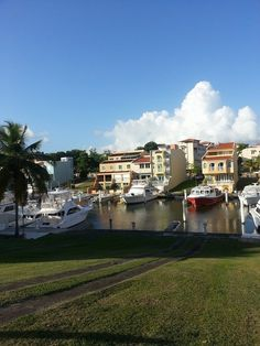 Palmas del Mar, Humacao | Puerto Rico #embgroup    http://www.facebook.com/EnriqueMaldonadoJr