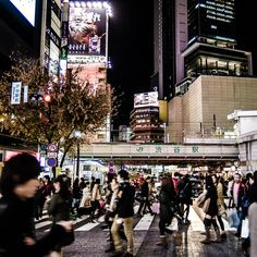 Shibuya at night. Photo courtesy of jcgolfing on Instagram.