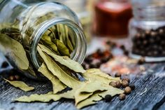 How I Healed My Diabetes With Ayurveda + Remedies Bay Leaf Benefits, Laurier Sauce, Burning Bay Leaves, Ras El Hanout, Curry Leaves, Growing Herbs, Natural Solutions, Garam Masala, Hair Loss