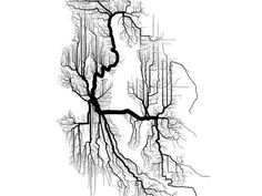 """This is a website that has art/data from the """"21 heroes of data visualization"""". Some of them really stand out and make for interesting designs. This specific image is made by Brandon Martin-Anderson, and it represents the walking and bicycle paths in Seattle."""