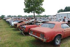 50 Salvage Yards Ideas Junkyard Old Cars Abandoned Cars