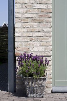 White wash brick & gray grren door. The Paper Mulberry: Exterior Paint Shades - Part 2