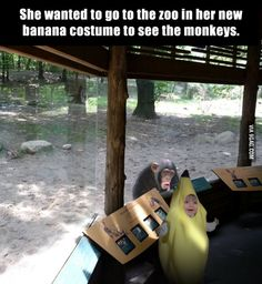 Funny Pictures of the week pics- She Wanted To Go To The Zoo In Her Banana Costume Haha Funny, Funny Cute, Funny Memes, Funny Stuff, Funny Things, Hilarious Sayings, That's Hilarious, Funny Messages, Funny Pranks
