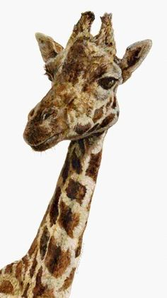 If u like giraffes u will like this panting