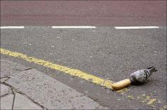 Matt Stuart, from iN-PUBLIC street photography website
