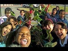 ▶ How to Start a School Garden - Help Kids Grow Healthy Food! - YouTube